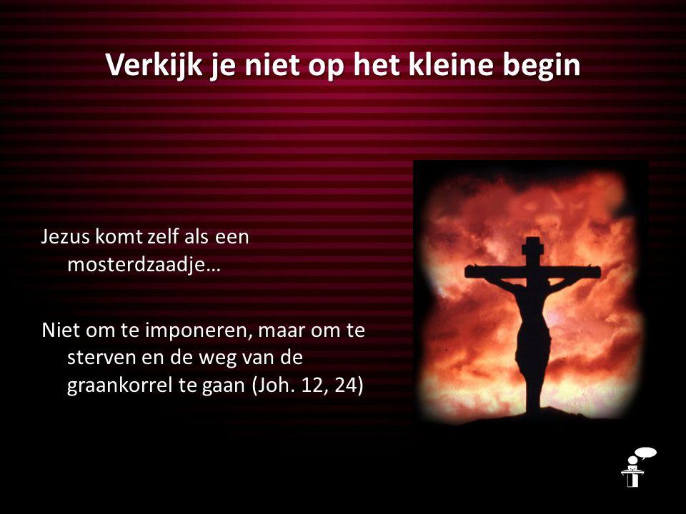 Verkijk je niet op het kleine begin Jezus komt zelf als een mosterdzaadje… Niet om te imponeren, maar om te sterven en de weg van de graankorrel te ga