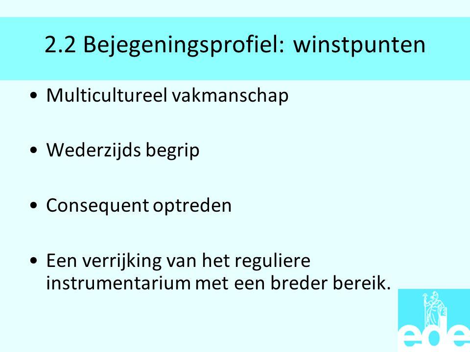 2.2 Bejegeningsprofiel: winstpunten Multicultureel vakmanschap Wederzijds begrip Consequent optreden Een verrijking van het reguliere instrumentarium