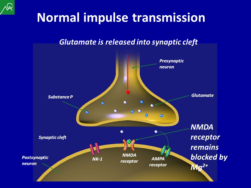 Substance P Presynaptic neuron Synaptic cleft Glutamate is released into synaptic cleft Glutamate Postsynaptic neuron AMPA receptor NMDA receptor NK-1