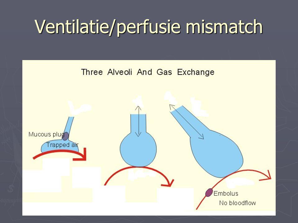 Ventilatie/perfusie mismatch