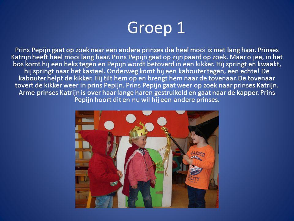 Groep 1 Prins Pepijn gaat op zoek naar een andere prinses die heel mooi is met lang haar.