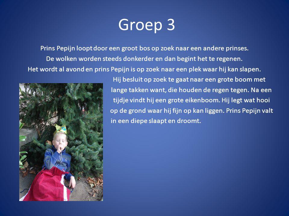 Groep 3 Prins Pepijn loopt door een groot bos op zoek naar een andere prinses. De wolken worden steeds donkerder en dan begint het te regenen. Het wor
