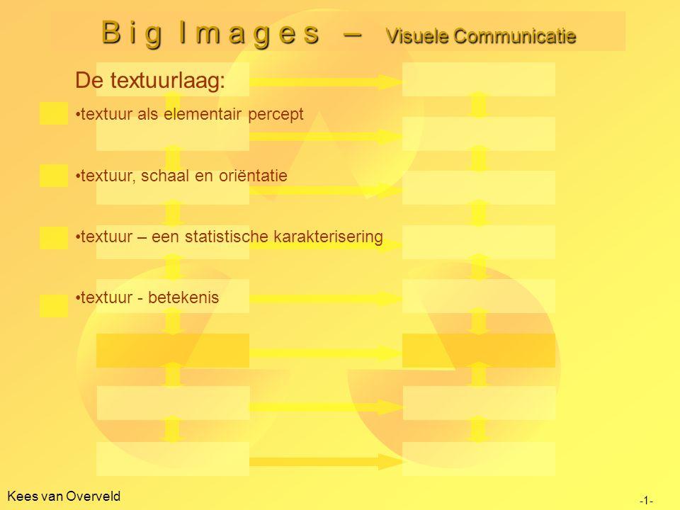 Kees van Overveld B i g I m a g e s – Visuele Communicatie -1- De textuurlaag: textuur als elementair percept textuur, schaal en oriëntatie textuur – een statistische karakterisering textuur - betekenis