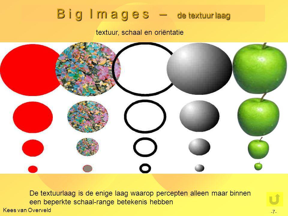 B i g I m a g e s – de textuur laag Kees van Overveld -8- textuur: een statistische karakterisering we herinneren ons: metingen door retina-detectoren leveren niet een 'mentaal plaatje' op in 'elk' retina-punt zijn detectoren actief … …met variërende footprint grootte (~ 'schaalgrootte') …met variërende oriëntatie …met variërende orde (0 e orde, 1 e orde, 2 e orde) …in elk van de 3 golflengte gebieden (kort, midden, lang) dus de meting in elk retina punt levert niet één meetwaarde op, maar maarliefst negen ('continue') verdelingen van meetwaarden over schaal en oriëntatie elk van die verdelingen kan gedacht worden gekarakteriseerd te zijn door een reeks kentallen (vgl.