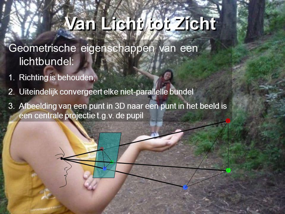 Van Licht tot Zicht Geometrische eigenschappen van een lichtbundel: 1.Richting is behouden; 2.Uiteindelijk convergeert elke niet-parallelle bundel 3.Afbeelding van een punt in 3D naar een punt in het beeld is een centrale projectie t.g.v.