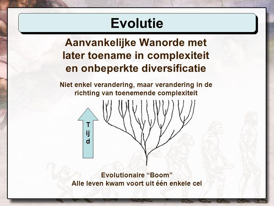 Aanvankelijke Complexiteit met later verslechtering en diversificatie binnen grenzen Creationistisch Woud Alle leven kwam voort uit vele complexe oertypes T ij d Schepping