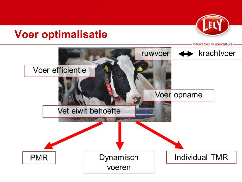 Voer optimalisatie Voer efficientie Voer opname Vet eiwit behoefte PMR Dynamisch voeren Individual TMR ruwvoer krachtvoer
