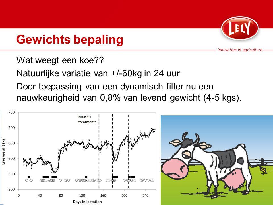 Gewichts bepaling Wat weegt een koe?.