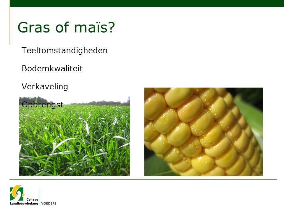 Gras of maïs? Teeltomstandigheden Bodemkwaliteit Verkaveling Opbrengst