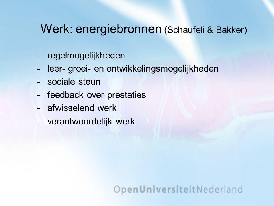 Werk: energiebronnen (Schaufeli & Bakker) regelmogelijkheden leer- groei- en ontwikkelingsmogelijkheden sociale steun feedback over prestaties afwisselend werk verantwoordelijk werk