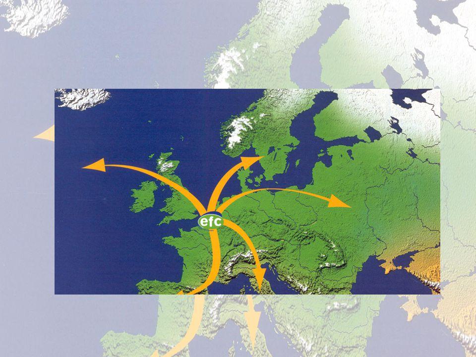 European Fruit Co-operation