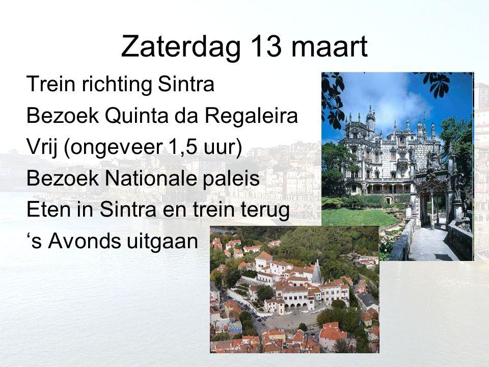 Zaterdag 13 maart Trein richting Sintra Bezoek Quinta da Regaleira Vrij (ongeveer 1,5 uur) Bezoek Nationale paleis Eten in Sintra en trein terug 's Av