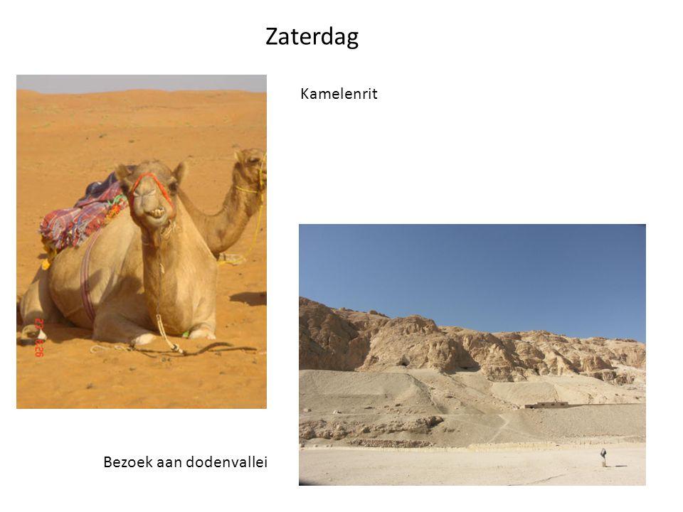 Zaterdag Kamelenrit Bezoek aan dodenvallei