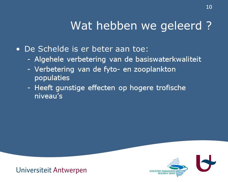 10 Wat hebben we geleerd ? De Schelde is er beter aan toe: -Algehele verbetering van de basiswaterkwaliteit -Verbetering van de fyto- en zooplankton p