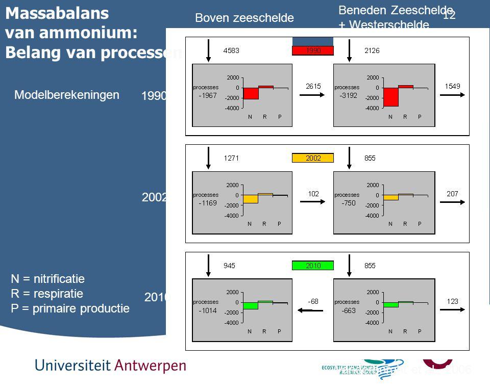 12 N = nitrificatie R = respiratie P = primaire productie Massabalans van ammonium: Belang van processen Vanderborght et al., 2006 1990 2002 2010 Mode