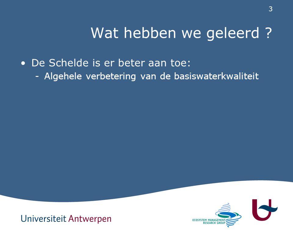 44 Conclusie De Schelde evolueert in een gunstige richting, maar of we de desired futures zullen bereiken zal afhangen van: -Het uitvoeren van de voorziene maatregelen -Het in detail opvolgen van het systeem via geïntegreerde monitoring gekoppeld aan onderzoek en modellering (cfr.