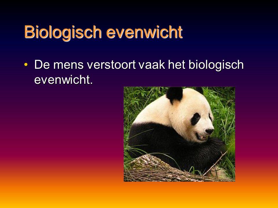 Biologisch evenwicht De mens verstoort vaak het biologisch evenwicht.De mens verstoort vaak het biologisch evenwicht.