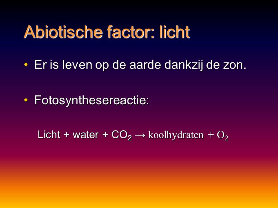 Abiotische factor: licht Er is leven op de aarde dankzij de zon.Er is leven op de aarde dankzij de zon.
