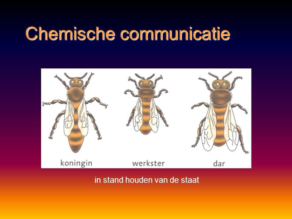 Chemische communicatie afbakenen van territorium, voortplanting