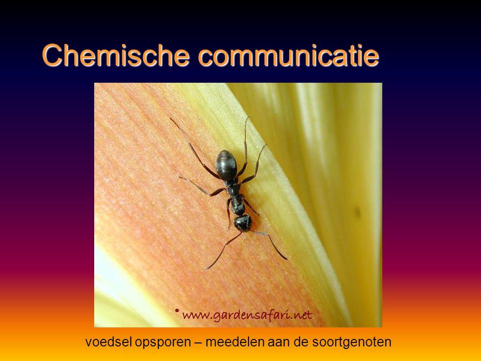 Chemische communicatie bescherming - verdediging