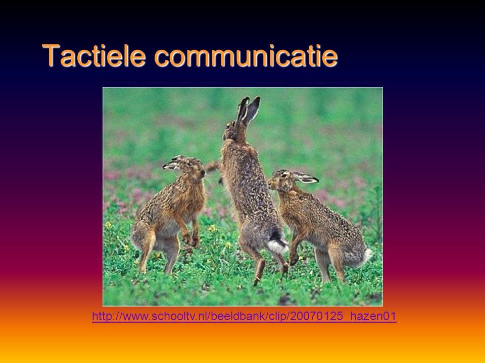 Tactiele communicatie Methode:Methode: aanrakingaanraking Functie:Functie: emotionele band opbouwenemotionele band opbouwen voortplantingvoortplanting