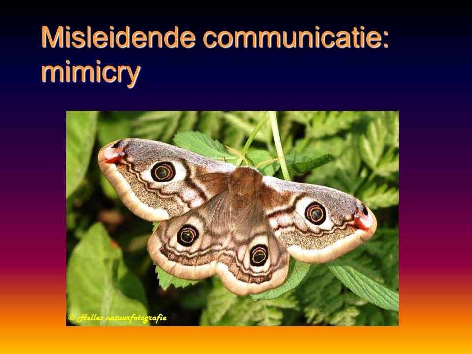 Misleidende communicatie Mimicry:Mimicry: nabootsen van vorm, kleur, gedrag van andere organismennabootsen van vorm, kleur, gedrag van andere organism