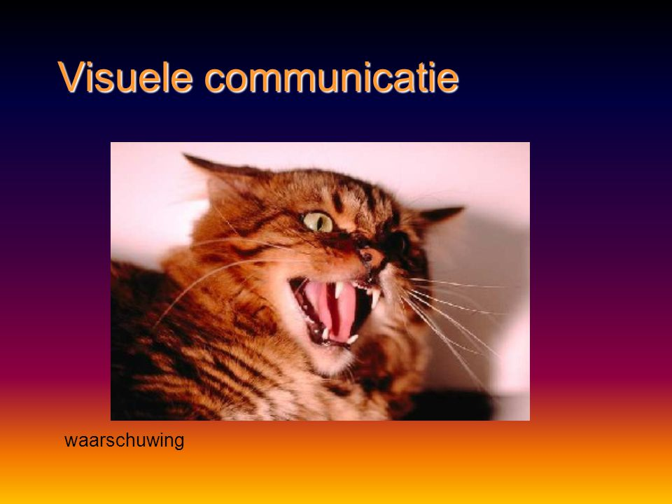 Visuele communicatie Herkenning – voortplanting http://www.youtube.com/watch?v=u-GgK56pkWc