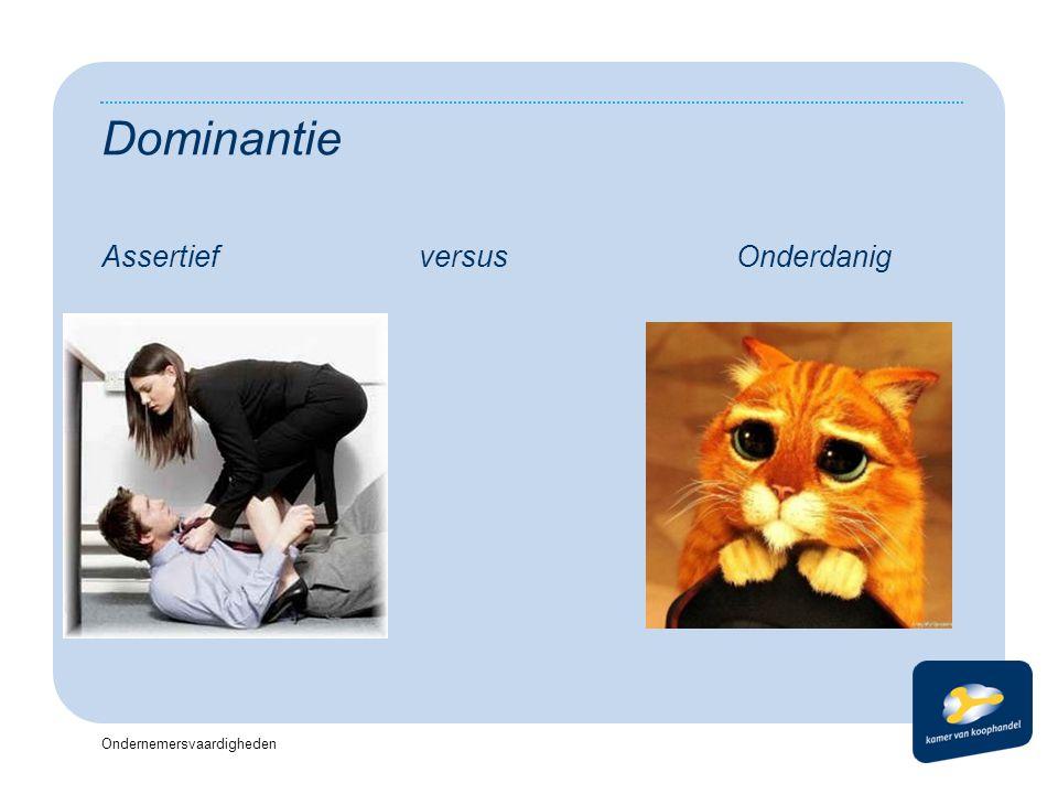 Ondernemersvaardigheden Dominantie AssertiefversusOnderdanig