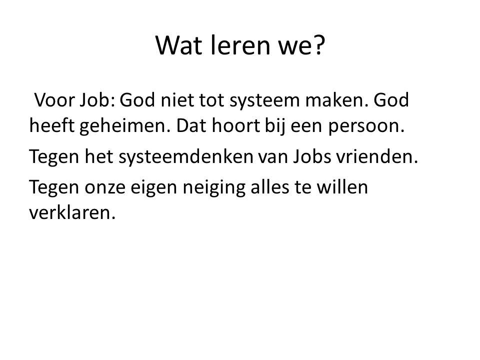 Wat leren we. Voor Job: God niet tot systeem maken.