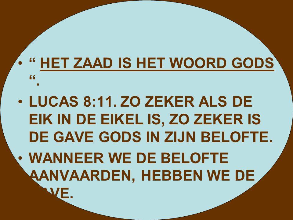 """"""" HET ZAAD IS HET WOORD GODS """". LUCAS 8:11. ZO ZEKER ALS DE EIK IN DE EIKEL IS, ZO ZEKER IS DE GAVE GODS IN ZIJN BELOFTE. WANNEER WE DE BELOFTE AANVAA"""