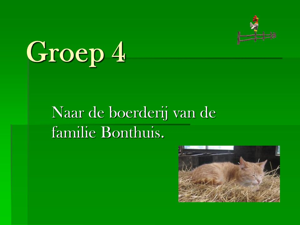 Groep 4 Naar de boerderij van de familie Bonthuis.