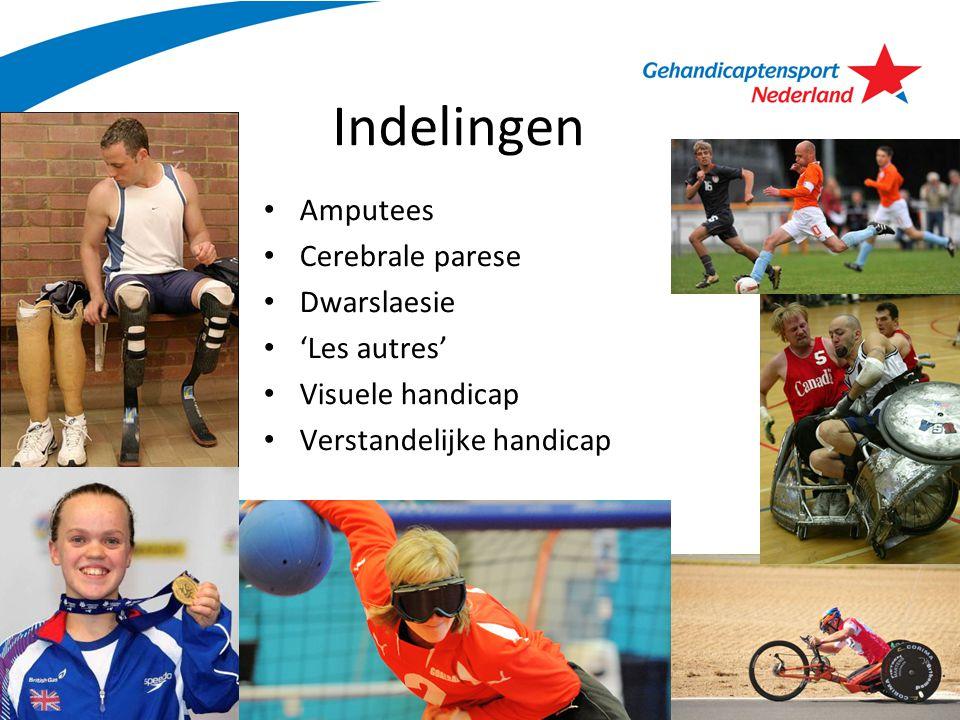 Uitvoering: de keuring Een gesprek met de sporter Een lichamelijk onderzoek naar mogelijkheden – Spierkracht – Mobiliteit (beweeglijkheid) gewrichten – Coördinatie Observatie in- en/of buiten competitie Uitslag