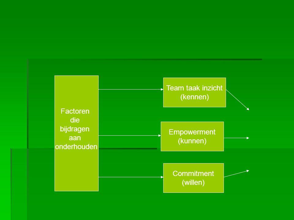   geef voortdurend feedback   verminder de verschillen in kennis   geen dominante deelnemers   zorg voor participatieve besluitvorming   zorg voor taak reallocatie   zorg voor voldoende resources (tijd, middelen mensen)   organiseer sociale bijeenkomsten (vooral voor virtueel team)