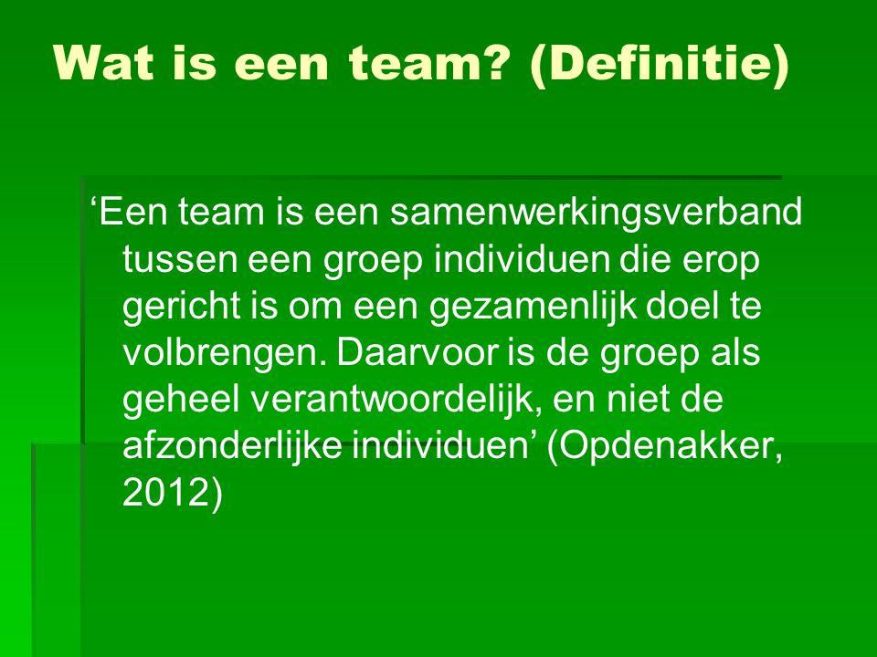   Strategisch momentum: 'vasthouden aan de team strategie'   Strategisch momentum opbouwen om team zodanig actief te maken dat ze door blijven gaan totdat het (project)doel bereikt is.
