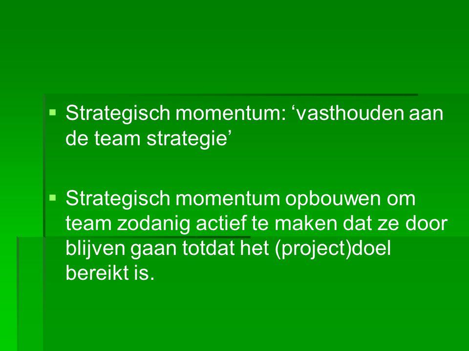 Team taak inzicht (kennen) Empowerment (kunnen) Commitment (willen) Strategisch momentum Effectief team