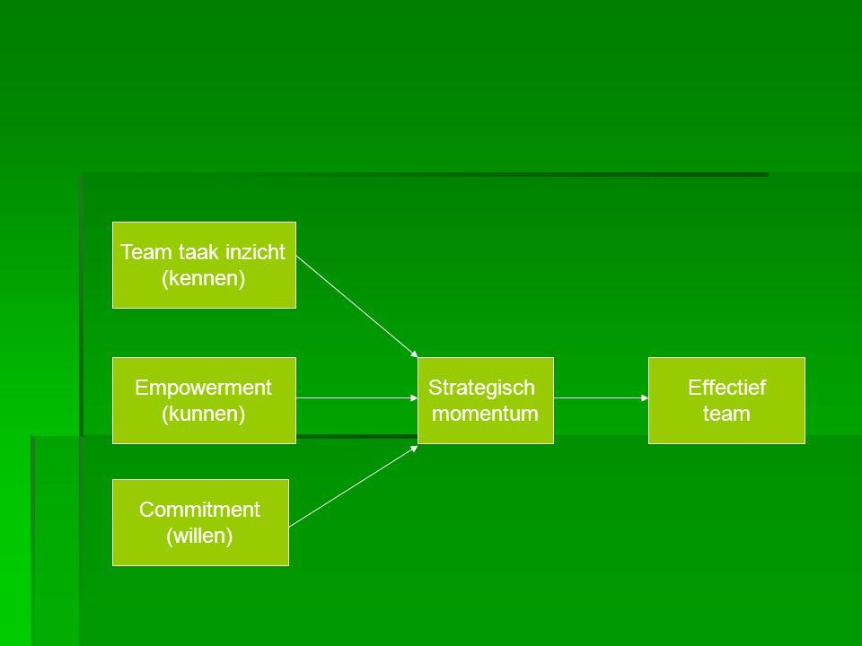 Team taak inzicht: de mate waarin de teamleden van mening zijn dat ze inzichten hebben verworven in de doelen en taken van het team.