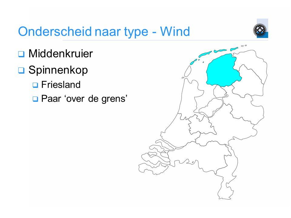 Onderscheid naar type - Wind  Middenkruier  Spinnenkop  Friesland  Paar 'over de grens'