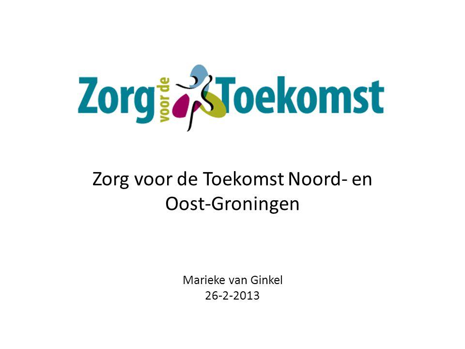 Zorg voor de Toekomst Noord- en Oost-Groningen Marieke van Ginkel 26-2-2013