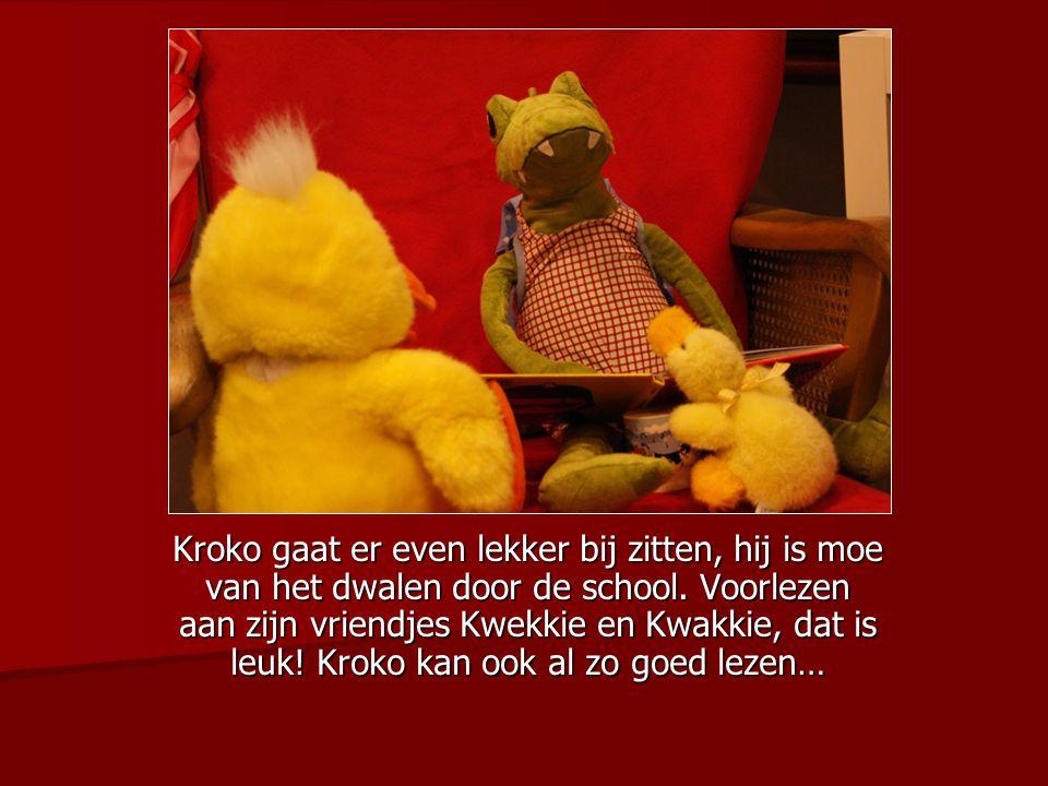 Kroko gaat er even lekker bij zitten, hij is moe van het dwalen door de school. Voorlezen aan zijn vriendjes Kwekkie en Kwakkie, dat is leuk! Kroko ka
