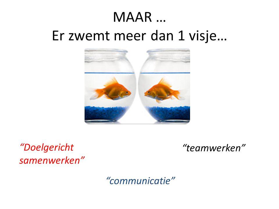 MAAR … Er zwemt meer dan 1 visje… Doelgericht samenwerken communicatie teamwerken