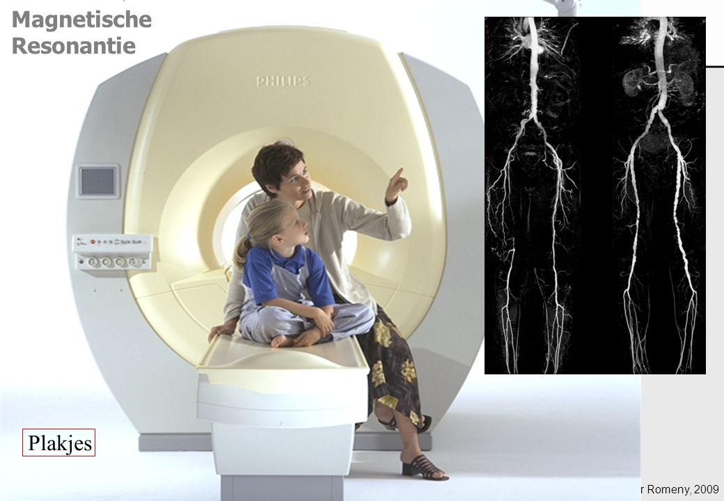ter Haar Romeny, 2009 Magnetische Resonantie Plakjes