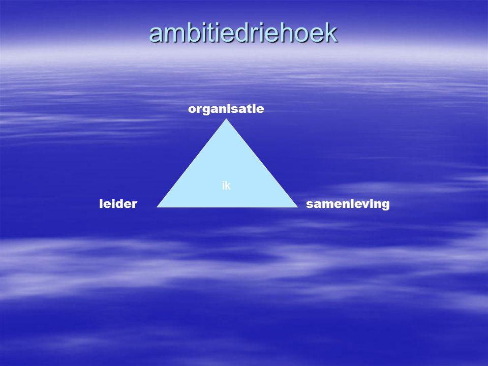 ambitiedriehoek samenlevingleider organisatie ik