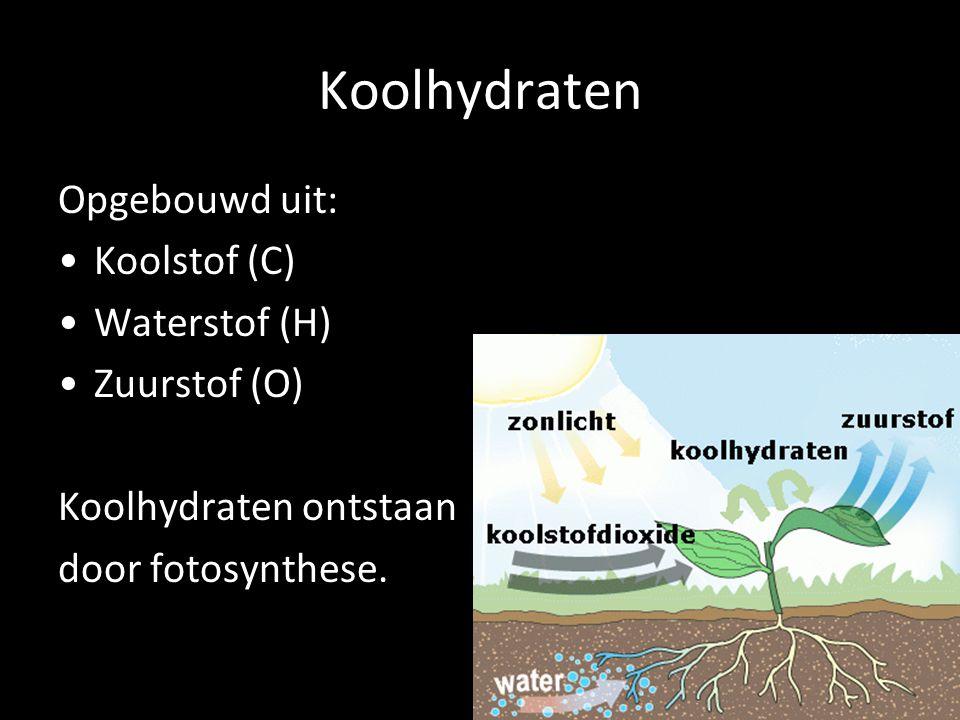 Koolhydraten Opgebouwd uit: Koolstof (C) Waterstof (H) Zuurstof (O) Koolhydraten ontstaan door fotosynthese.