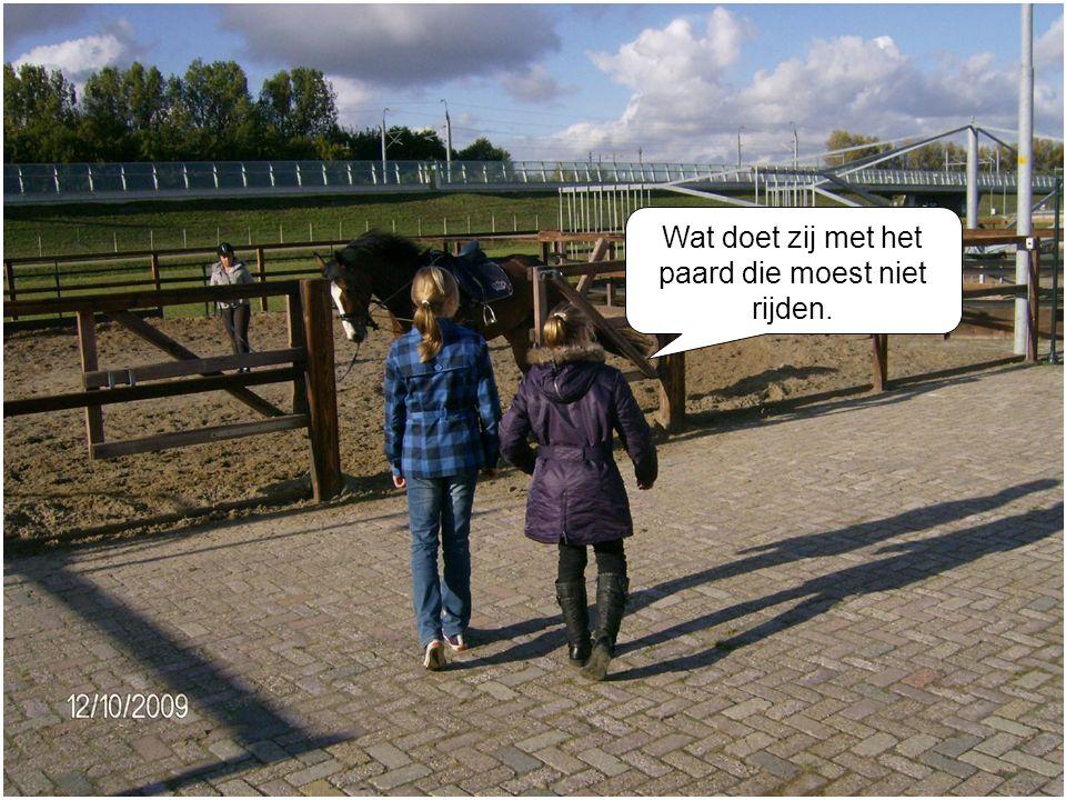 Wat doet zij met het paard die moest niet rijden.