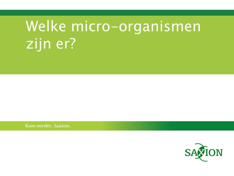 Kom verder. Saxion. Welke micro-organismen zijn er?