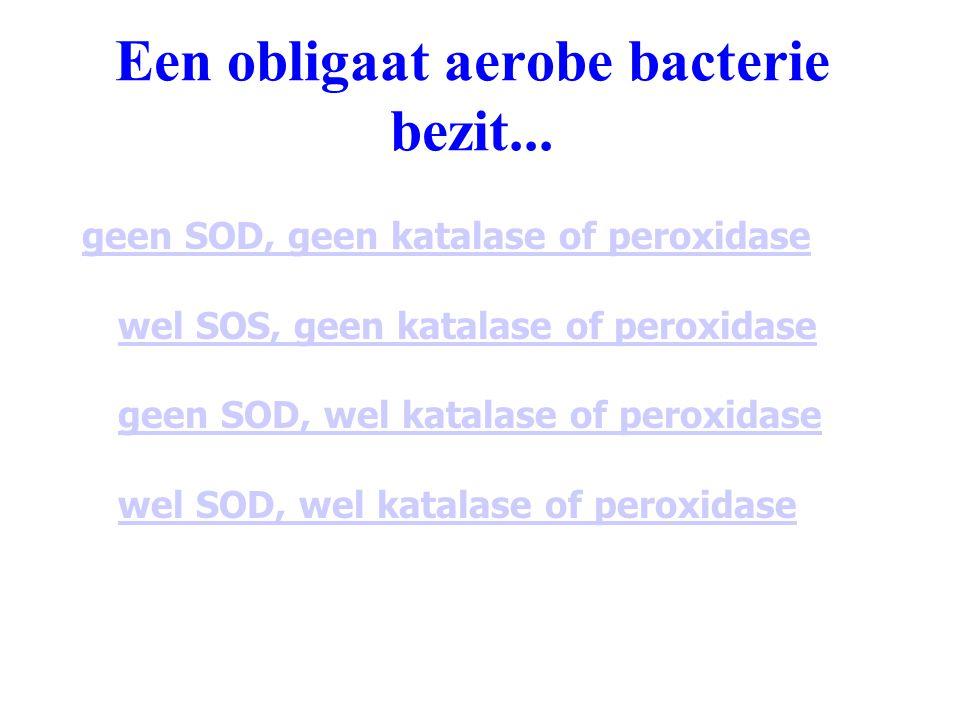 Een obligaat aerobe bacterie bezit... geen SOD, geen katalase of peroxidase wel SOS, geen katalase of peroxidase geen SOD, wel katalase of peroxidase