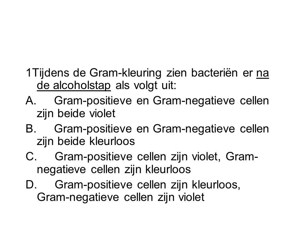 1Tijdens de Gram-kleuring zien bacteriën er na de alcoholstap als volgt uit: A. Gram-positieve en Gram-negatieve cellen zijn beide violet B. Gram-posi