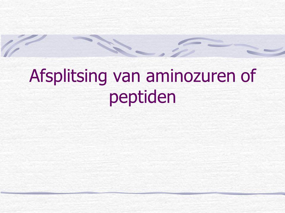 Afsplitsing van aminozuren of peptiden