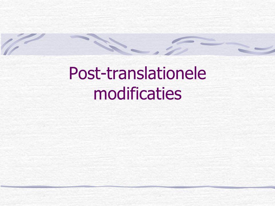 Post-translationele modificaties