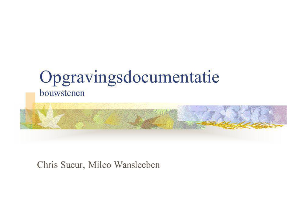 Opgravingsdocumentatie bouwstenen Chris Sueur, Milco Wansleeben